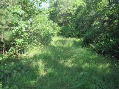 Adams Residential Lots & Land For Sale: 41.98 Ac W State St
