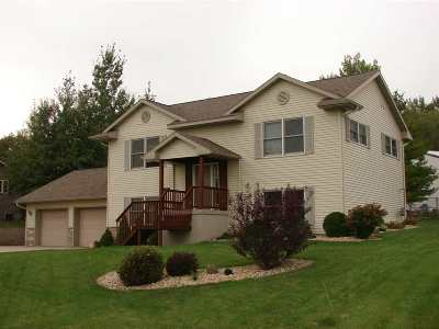 Iowa County Single Family Home For Sale: 1450 Bea Ann Dr