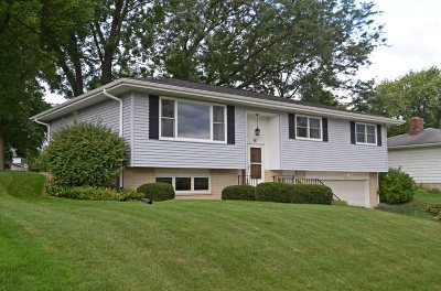 Dane County Single Family Home For Sale: 286 Waterman St
