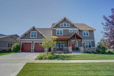 Dane County Single Family Home For Sale: 2514 Genevieve Way