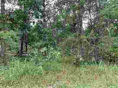 Adams Residential Lots & Land For Sale: L17-L20 W 9th Ave