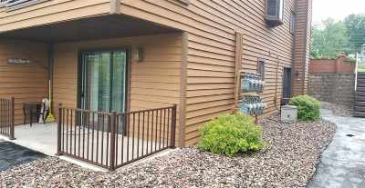 Wisconsin Dells Condo/Townhouse For Sale: 1111 River Rd #201