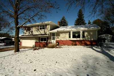 Dane County Single Family Home For Sale: 4702 Flint Ln