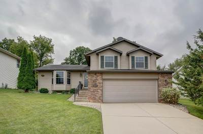 Dane County Single Family Home For Sale: 6417 Tonkinese Tr