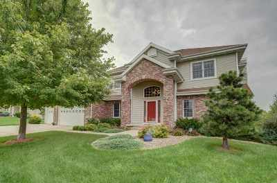 Cottage Grove Single Family Home For Sale: 706 Stoney Hill Ln