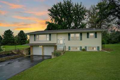 Cottage Grove Single Family Home For Sale: 3728 Vilas Rd