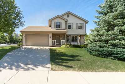 Middleton Single Family Home For Sale: 702 Cone Flower St