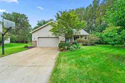 Sun Prairie Single Family Home For Sale: 992 New Haven Cir