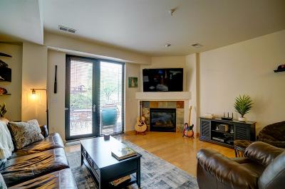 Madison Condo/Townhouse For Sale: 808 Williamson St #101