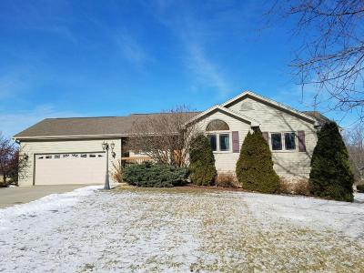 Dodge County Single Family Home For Sale: 699 Spruce St