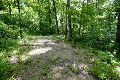 Dodge County Residential Lots & Land For Sale: Lt1 Grant Rd Road