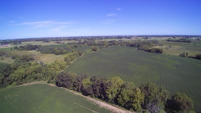 Dodge County Residential Lots & Land For Sale: Lt86 Hilbert Rd Road