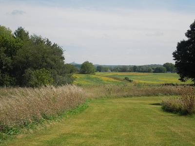 Dodge County Residential Lots & Land For Sale: 002-W452 County Rd O