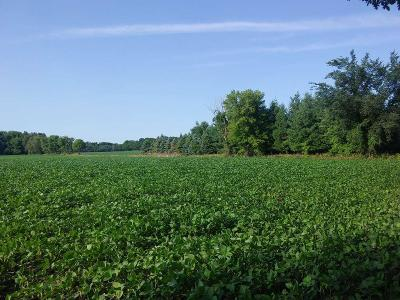 Fond du Lac County Residential Lots & Land For Sale: Townhall Road Road
