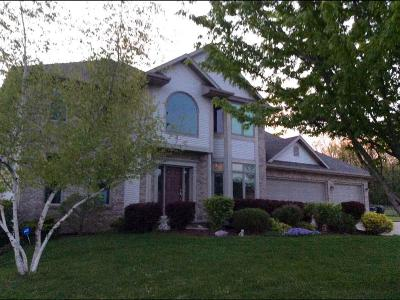 Oshkosh Single Family Home For Sale: 1741 Cottontail Drive Drive