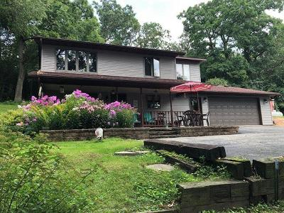 Green Lake County Single Family Home For Sale: N6643 Valley View Drive Drive