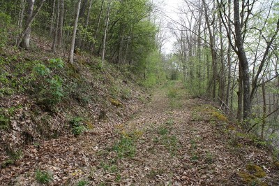 Ivydale WV Residential Lots & Land For Sale: $95,000