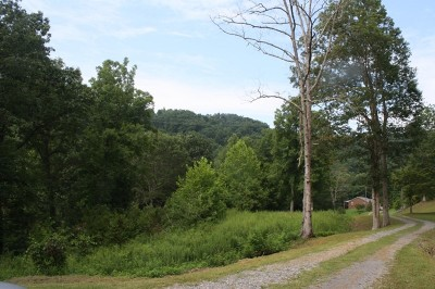 Big Otter WV Residential Lots & Land For Sale: $22,000