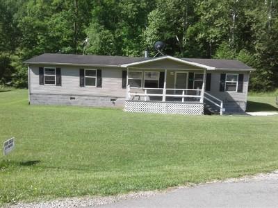 Clendenin WV Single Family Home For Sale: $89,000
