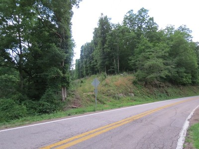 Looneyville WV Residential Lots & Land For Sale: $89,999