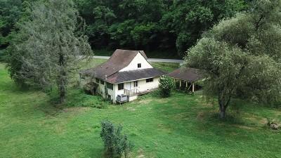 Chloe WV Residential Lots & Land For Sale: $50,000