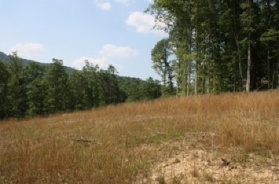 Wallback WV Residential Lots & Land For Sale: $15,000