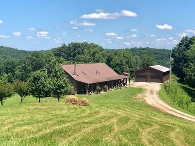 Gandeeville WV Single Family Home For Sale: $399,000