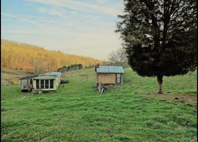 Gandeeville WV Residential Lots & Land For Sale: $32,000