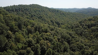 Newton WV Residential Lots & Land For Sale: $36,000