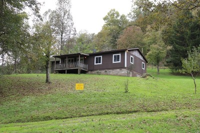 Single Family Home For Sale: 932 Lees Run
