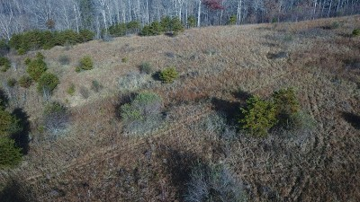 Residential Lots & Land For Sale: 123 Bear Fork Road