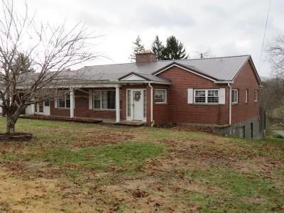 Spencer Single Family Home For Sale: 627 Parkersburg Road