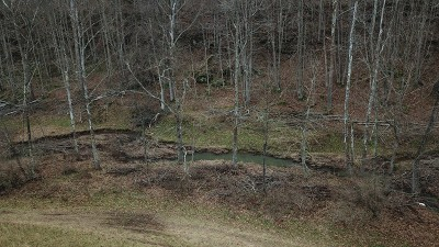 Reedy WV Farm For Sale: $300,000