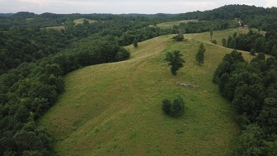 Walton WV Residential Lots & Land For Sale: $345,000
