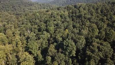 Linden WV Residential Lots & Land For Sale: $30,000