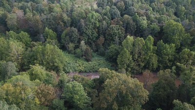 Ripley WV Residential Lots & Land For Sale: $15,900