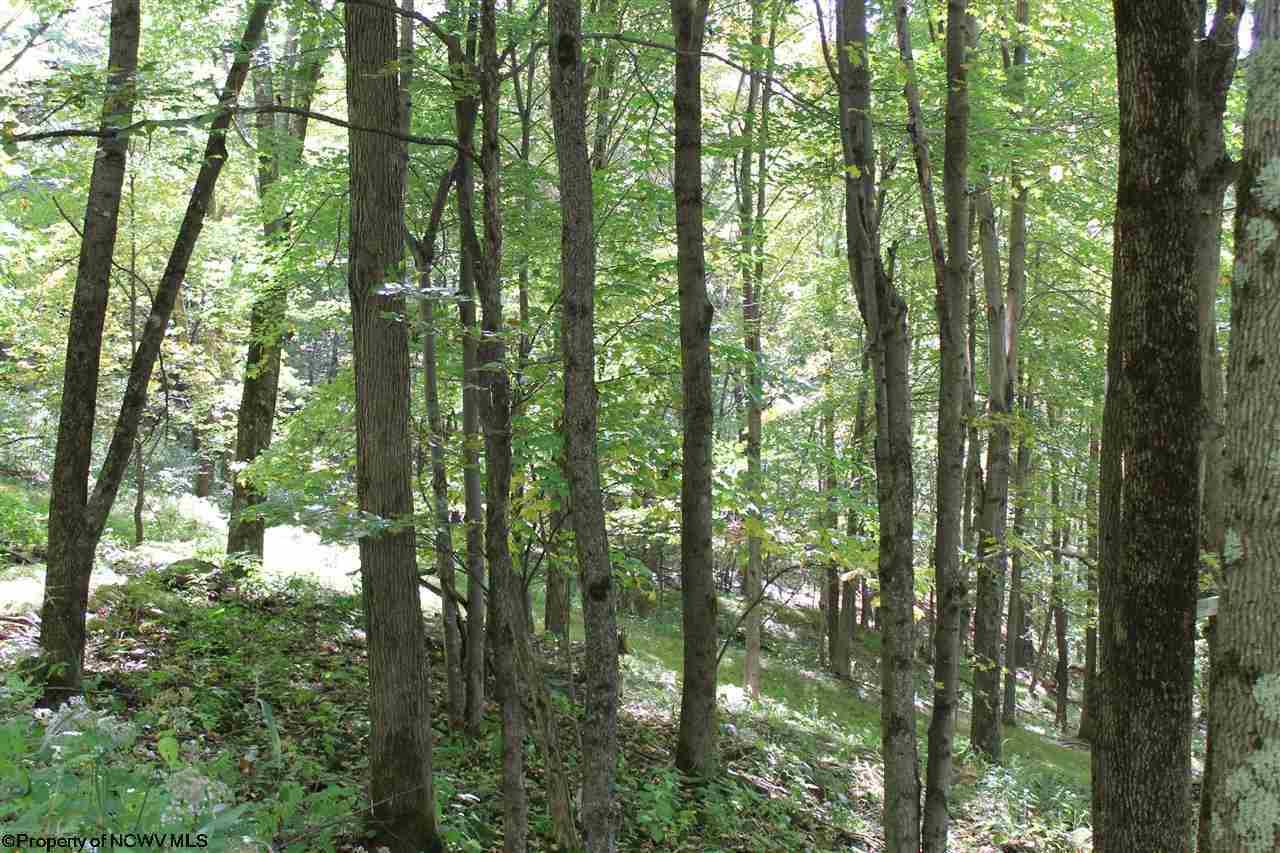 14 Meadows Rd E High Mountain Road,