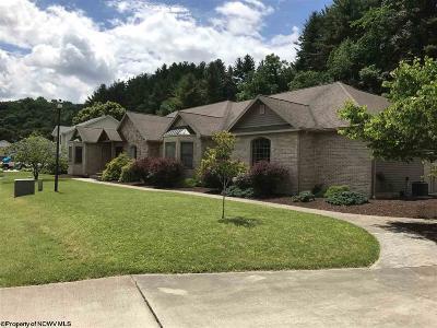 Elkins Single Family Home For Sale: 309 Tygart Court