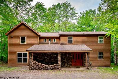 Davis Single Family Home For Sale: 464 Mountainside Road