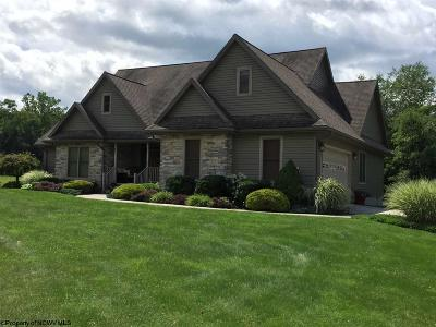Elkins Single Family Home For Sale: 1070 Kings Run Road