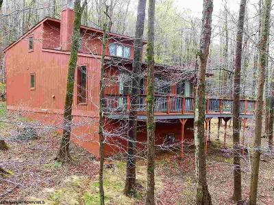 Davis Single Family Home For Sale: 454 Cabin Mountain Road