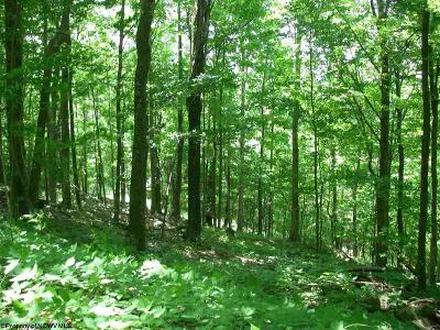 Davis WV Residential Lots & Land For Sale: $135,000