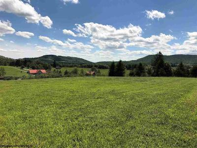 Davis WV Residential Lots & Land For Sale: $38,000