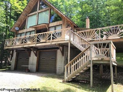 Single Family Home For Sale: 1317 Cabin Mountain Road