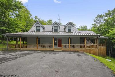 Davis Single Family Home For Sale: 534 Mountainside Road