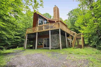Single Family Home For Sale: 518 Cabin Mountain Road