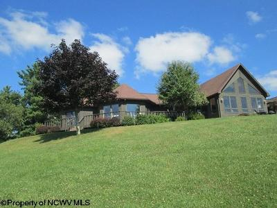 Elkins Single Family Home For Sale: 276 Faraway Knolls Road