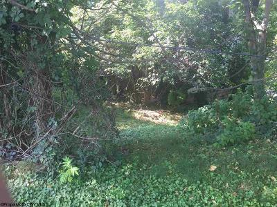 Residential Lots & Land For Sale: 420 Delaware Avenue