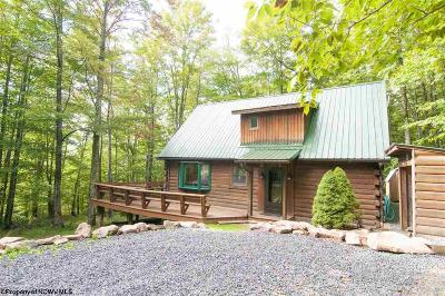 Single Family Home For Sale: 521 Mountainside Road