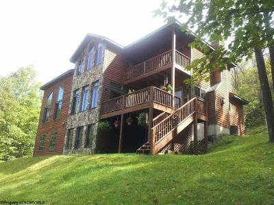 Single Family Home For Sale: 158 Mountainside Court